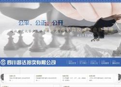 四川昌达拍卖有限公司网站设计案例图片