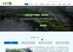 重庆谷普企业管理咨询有限公司网站设计案例图片